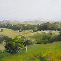 Oil Painting From Mt Cooroy Sunshine Coast Queensland Australia by Chris Hobel