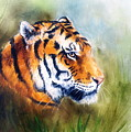 Oil Painting Of A Bright Mighty Tiger Head On A Soft Toned Abstr by Jozef Klopacka