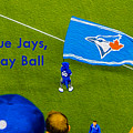 O.k. Blue Jays Let's Play Ball by Nina Silver