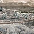 Okanagan Backroad by Bill Kellett