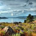 Okanagan Lake In The Spring by Tara Turner
