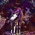 Okapi Okapia Mondonga Mammals  by PixBreak Art