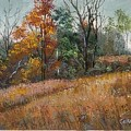 Oklahoma Autumn by Peggy Conyers
