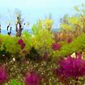 Oklahoma Spring Colors by Shelli Fitzpatrick