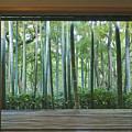 Okochi Sanso Villa Bamboo Garden by Rob Tilley