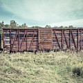 Old Abandoned Box Cars Central Vermont by Edward Fielding