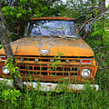 Old Abandoned Ford Truck In The Forest by Gary Corbett