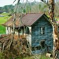 Old Abandoned Rural Hose by Douglas Barnett