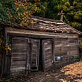 Old Abandoned Shed Sonoma County by Blake Webster