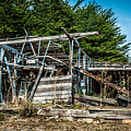 Old Abandoned Structure Sonoma County by Blake Webster
