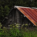Old Alaskan Shed by Lori Mahaffey