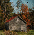 Old And Abandoned In Vermont by Deborah Benoit