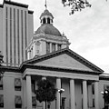 Old And New Florida State Capitol Buildings by Wayne Denmark