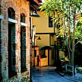 Old Antalya by Inna Nedzelskaia