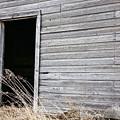 Old Barn 2 by Linda Bianic
