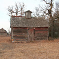 Old Barn And Shed, Just Ain't What They Used To Be by Amelia Painter
