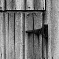 Old Barn Door by Timothy Johnson