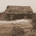 Old Barn In Oregon by Carol Groenen
