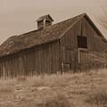 Old Barn In Washington by Carol Groenen