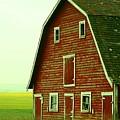 Old Barn by Mario Brenes Simon