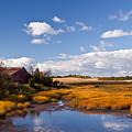 Old Barn On Salt Marsh Edge #2 by Irwin Barrett
