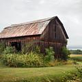 Old Barn On Seneca Lake - Finger Lakes - New York State by Gary Heller