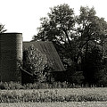 Old Barn Outbuildings And Silo  by Scott D Van Osdol