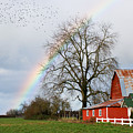 Old Barn Rainbow by Randall Ingalls