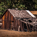 Old Barn River Road Sonoma County by Blake Webster