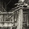 Old Barn Ruin 3 by Bob Phillips