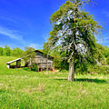 Old Barn, Smith Mountain Lake by The American Shutterbug Society