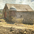 Old Barn Still Standing  by Betty Pauwels