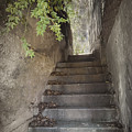 Old Bisbee Stairway by Lynn Andrews