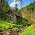 Old Black Forest Mill by Dean Wittle