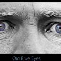 Old Blue Eyes Poster Print by James BO  Insogna