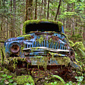 Old Blue Truck In Forest by Peggy Collins