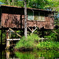 Old Boat House by Barbara Bowen