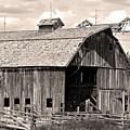 Old Boulder County Colorado Barn by James BO  Insogna