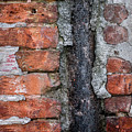 Old Brick Wall Abstract by Elena Elisseeva