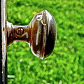 Old Brown Doorknob by Diana Hatcher