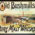Old Bushmills Irish Whiskey. Old Advertising Poster by David Lyons
