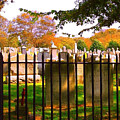 Old Cemetary In Newport Rhode Island by Becky Lupe