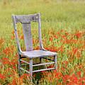 Old Chair In Wildflowers by Jill Battaglia