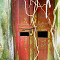Old Chinese Village Door Eleven by Kathy Daxon