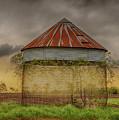 Old Corn Crib In The Cloudy Sky by Terri Morris