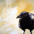 Old Crow by Milenko Katic