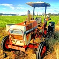 Old David Brown Tractor  by Stuart Clifford