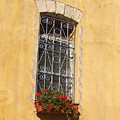 Old Decorated Window In Safed by Arik Baltinester