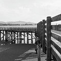 Old Dock by Dave Hill