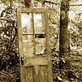 Old Door by Linda McRae